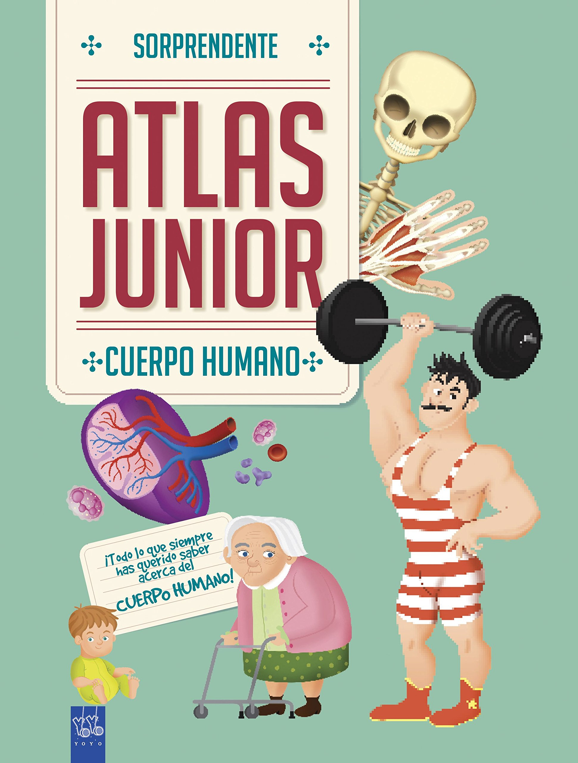 Cuerpo humano: Sorprendente Atlas Junior: Amazon.es: YOYO, S.A. Editorial  Planeta: Libros