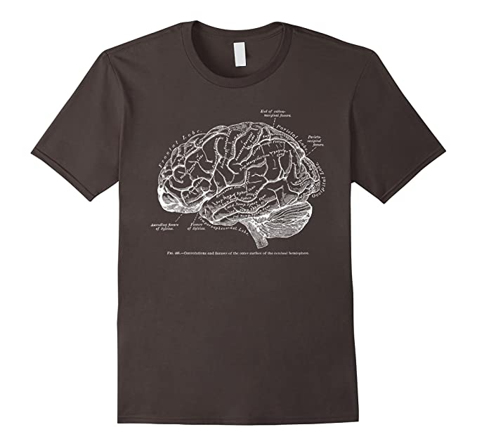 Amazon Vintage Human Anatomy Brain Tee T Tshirt Clothing