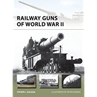Railway Guns of World War II (New Vanguard Book 231)