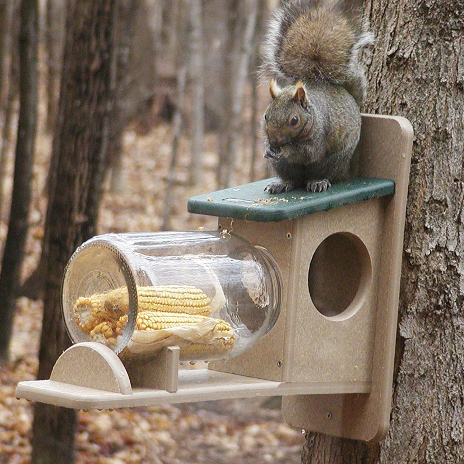 Birds Choice Squirrel Jar Feeder