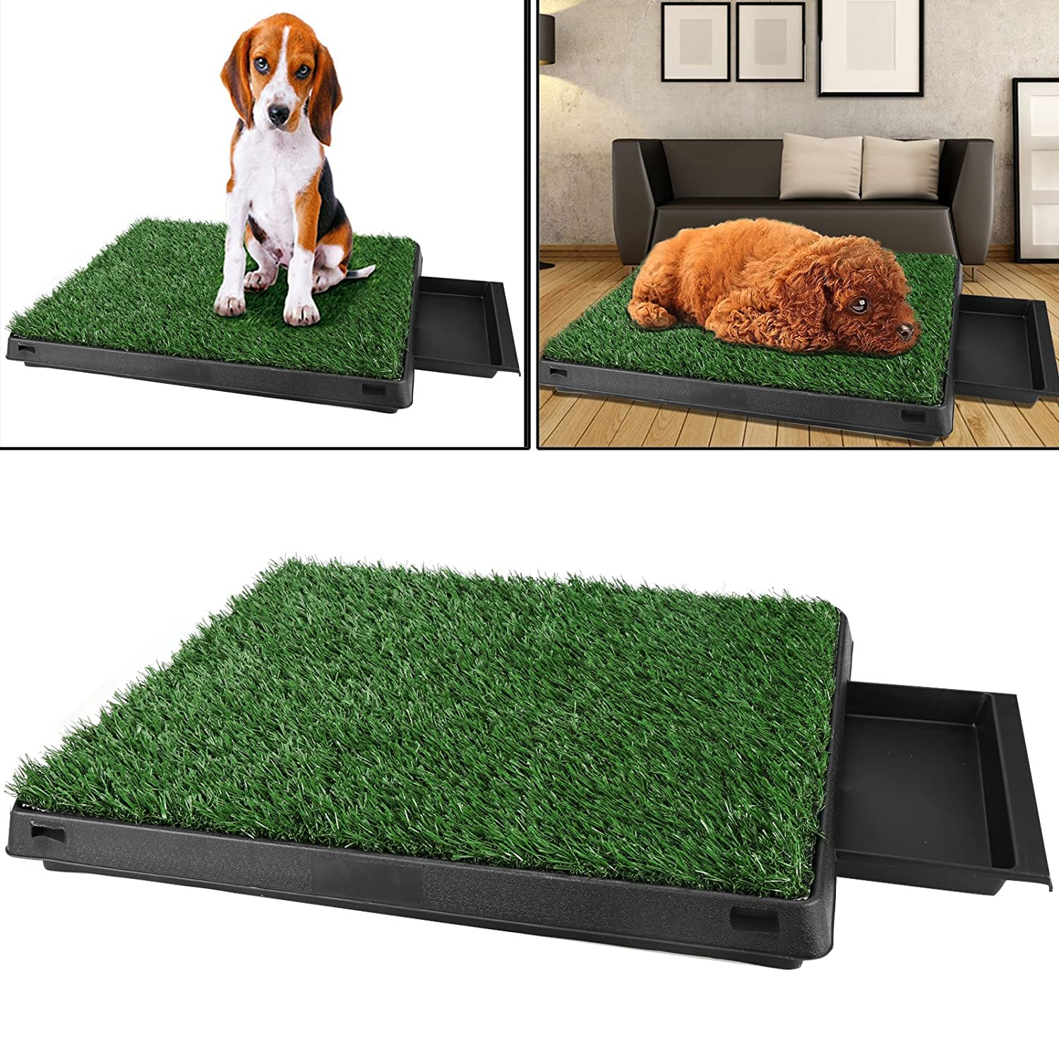 Amazon.com : Homdox Dog Potty Pad Puppy Pads Indoor Potty Patch Dog Grass  Mat Training Pad Pet Potty Dog Training Pads Non Toxic Synthetic Grass 24.6  X 19.5 ...
