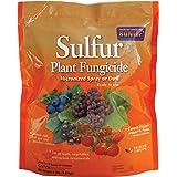 Bonide 142 Sulphur Dust Fungicide, 4-Pound