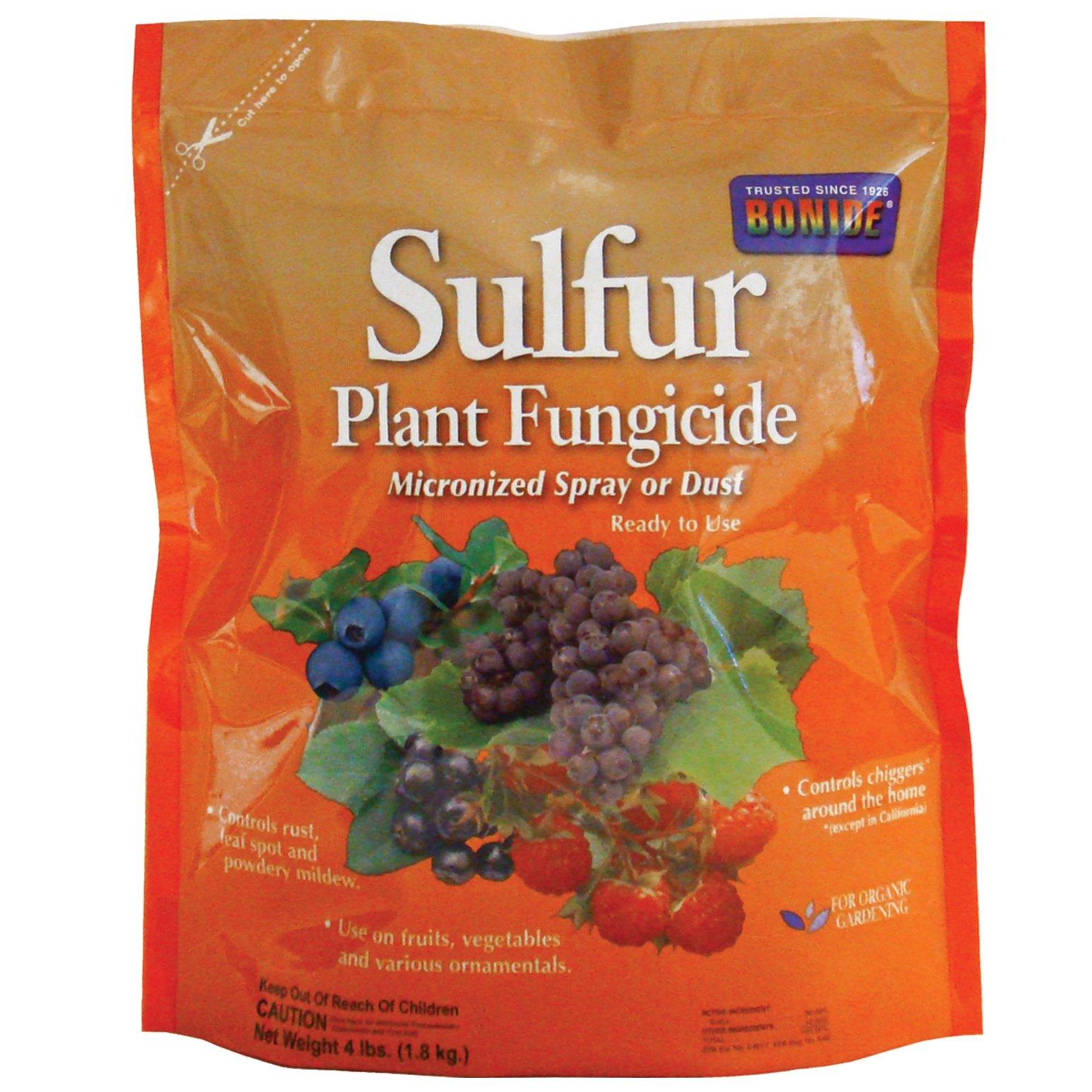 Bonide 142 Sulphur Dust Fungicide, 4-Pound by Bonide (Image #1)