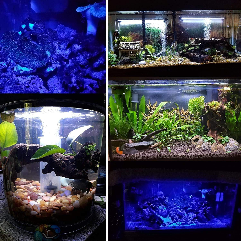 White /& Blue LED Light bar Stick for Fish Tank MingDak Submersible LED Aquarium Light,Fish Tank Light with Timer Auto On//Off 3 Light Modes Dimmable,6W,11 Inch