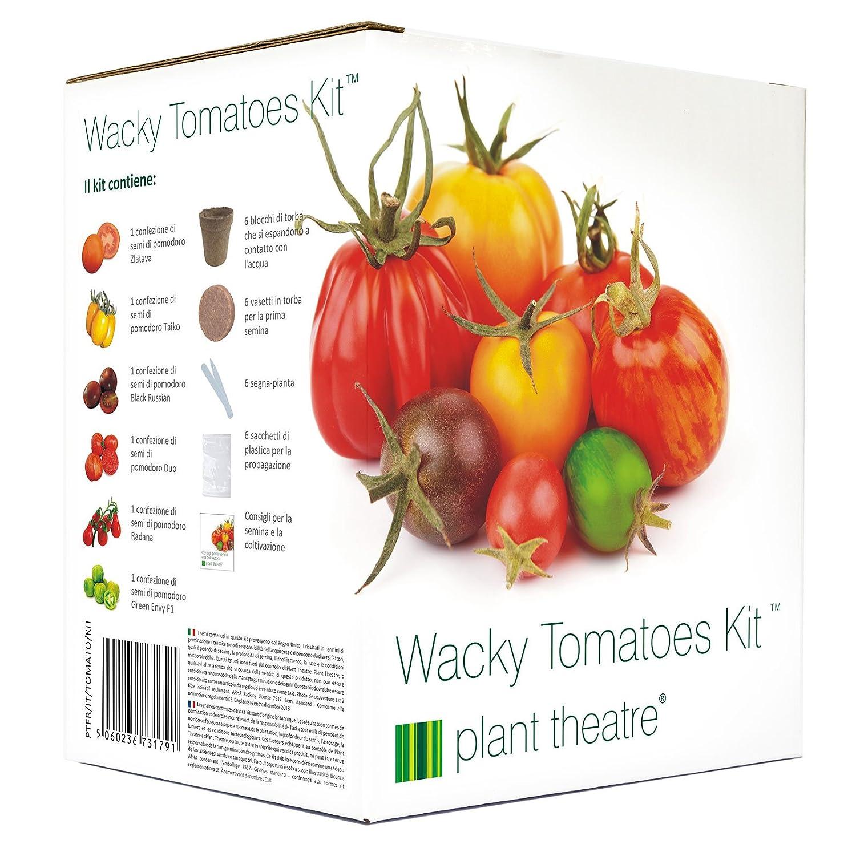 Plant Theatre Kit Wacky Tomatoes–6verschiedene Sorten zum Anbauen–Geschenk ideal