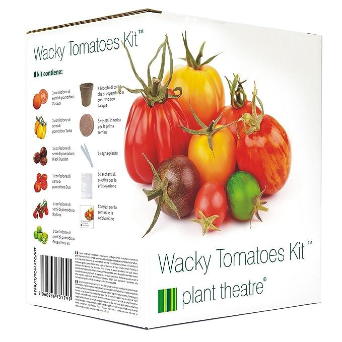 30 opinioni per Plant Theatre Wacky Tomatoes Kit- 6 diverse varietà da coltivare- Regalo ideale