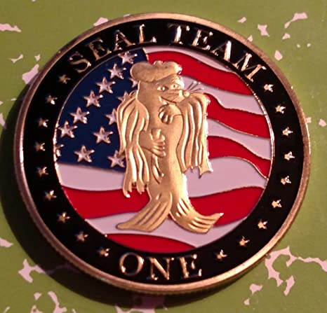 Navy Seal Team One Military Challenge Art Coin
