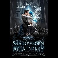 Shadowborn Academy: Year Two (Dark Fae Academy Series Book 2) (English Edition)