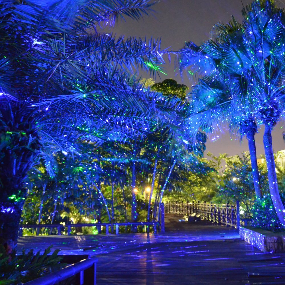 WANCHAUNG Update Newest RGB Firefly Garden Tree and Outdoor Wall Decoration Lights with RF Remote Control for Decorative Light, Holiday Lighting, Camping and Wedding (Green&Blue)