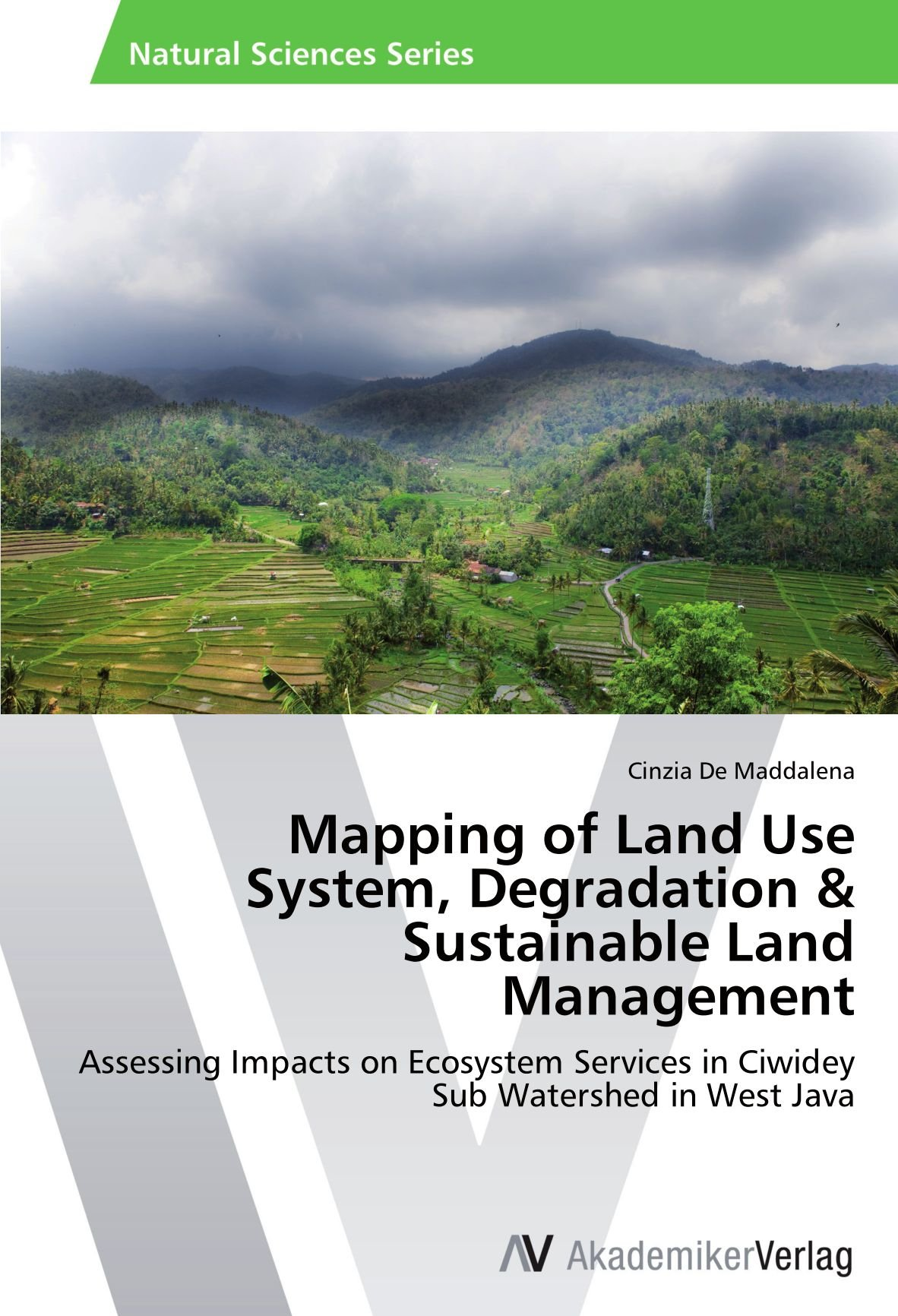 Read Online Mapping of Land Use System, Degradation & Sustainable Land Management: Assessing Impacts on Ecosystem Services in Ciwidey Sub Watershed in West Java pdf epub