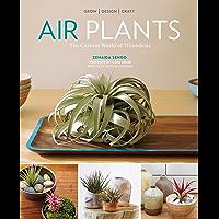 Air Plants: The Curious World of Tillandsias