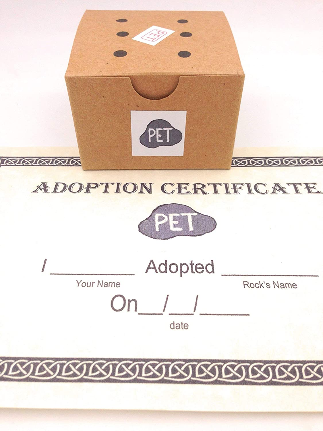Amazon rock pet kit with adoption certificate handmade solutioingenieria Image collections
