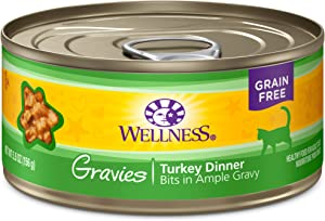Wellness Natural Grain Free Wet Canned Cat Food Gravies Turkey