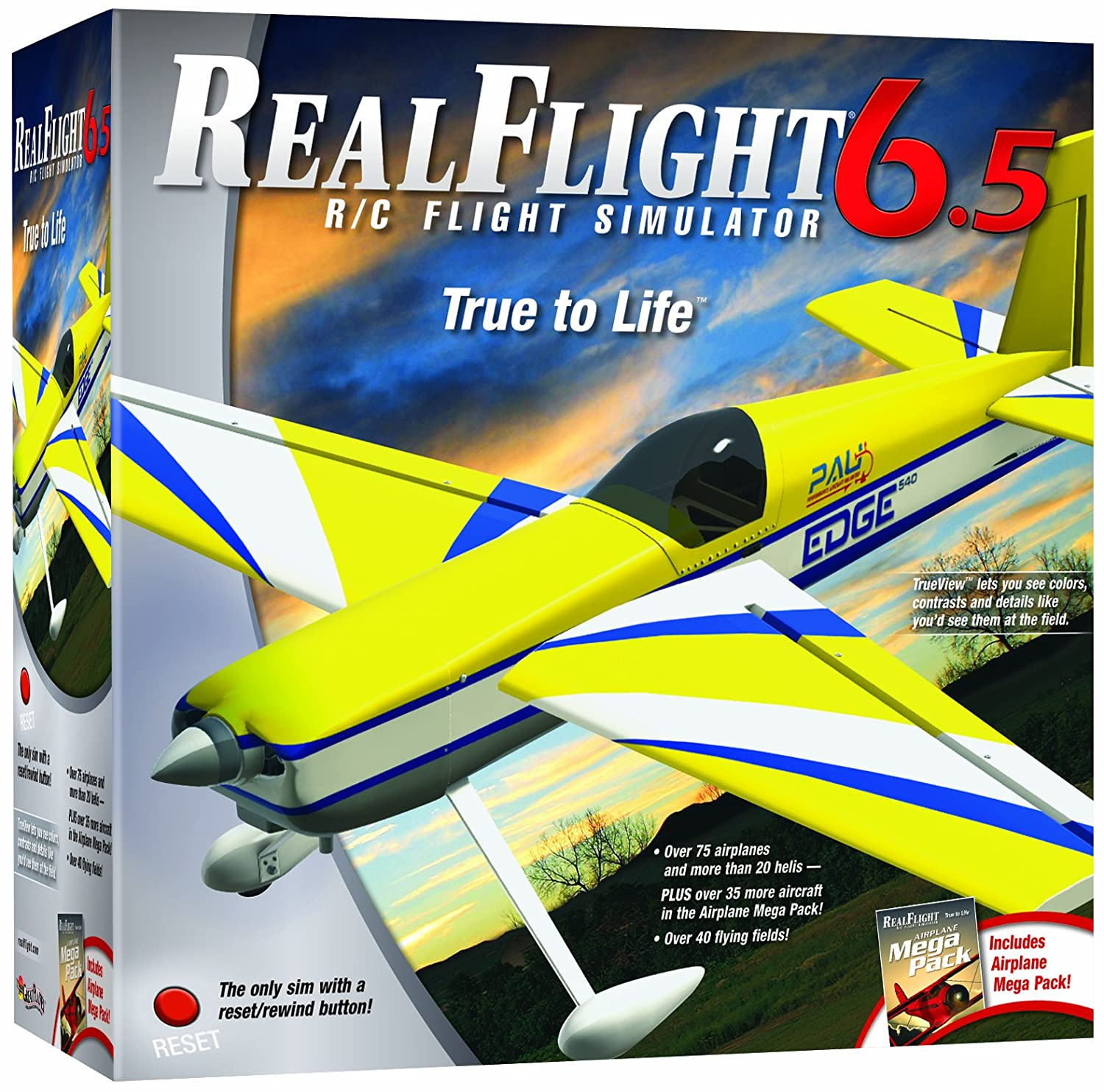 Great Planes RealFlight 6 5 Airplane with Mode 2 Interlink