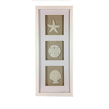 coastal beach framed sandstone sea shells shadowbox vertical wall art scallop starfish sand