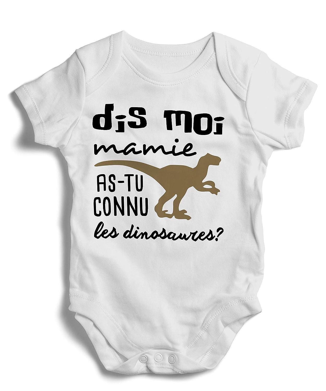 Body grenouillère Mamie dinosaures