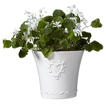 Amazon.de: Schöne französische Stil * 701 weiß Keramik Blumentopf ...
