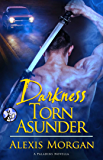 Darkness Torn Asunder (The Paladin)