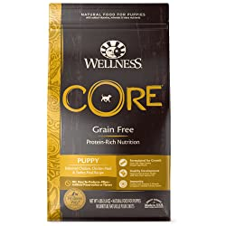 Wellness Core Dry Dog Food for Puppies