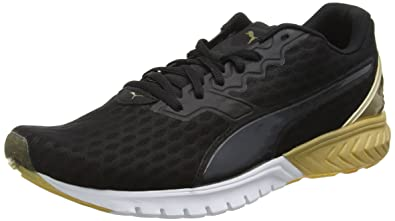 034219eb1b00 Puma Women s Ignite Dual WN s Running Shoes