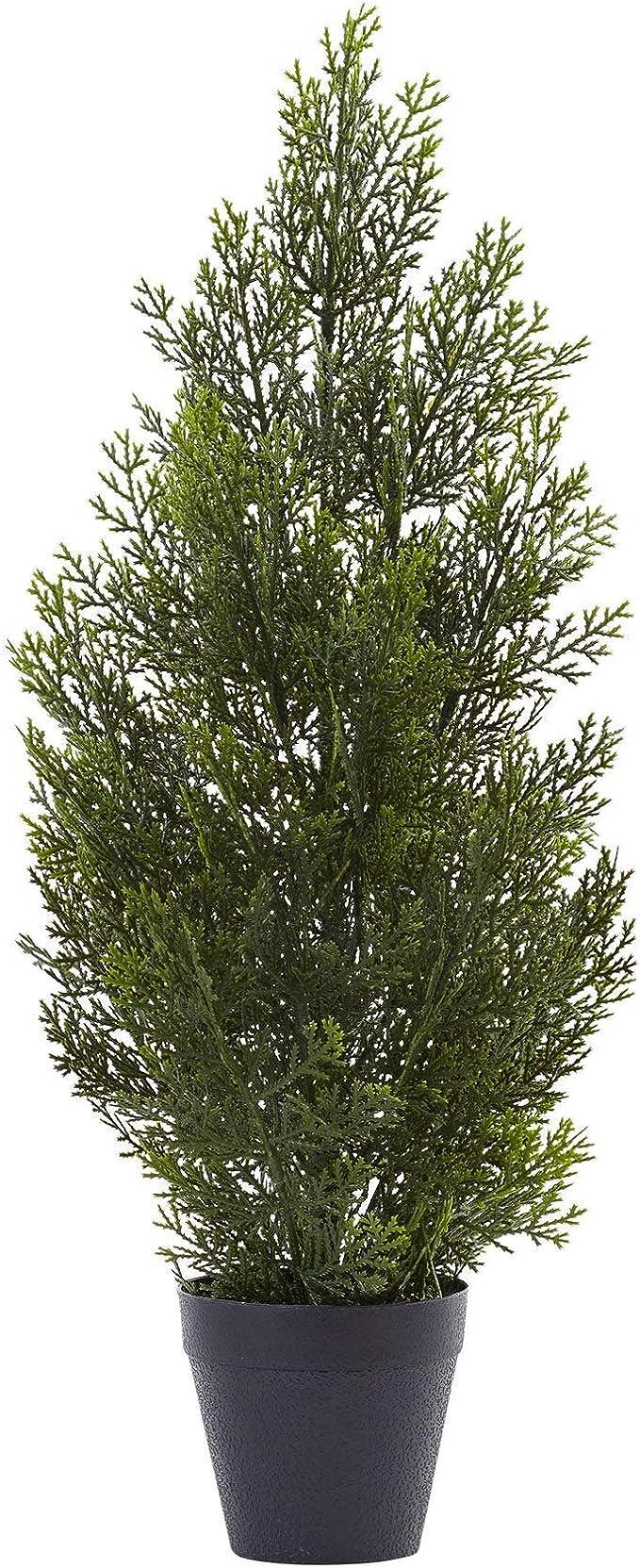 Casi Natural Mini Cedro Pino árbol: Amazon.es: Hogar