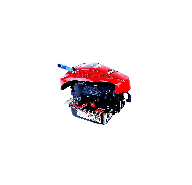 Motor Briggs Stratton 160cc Ausgang 22,2x 80mm für Rasenmäher