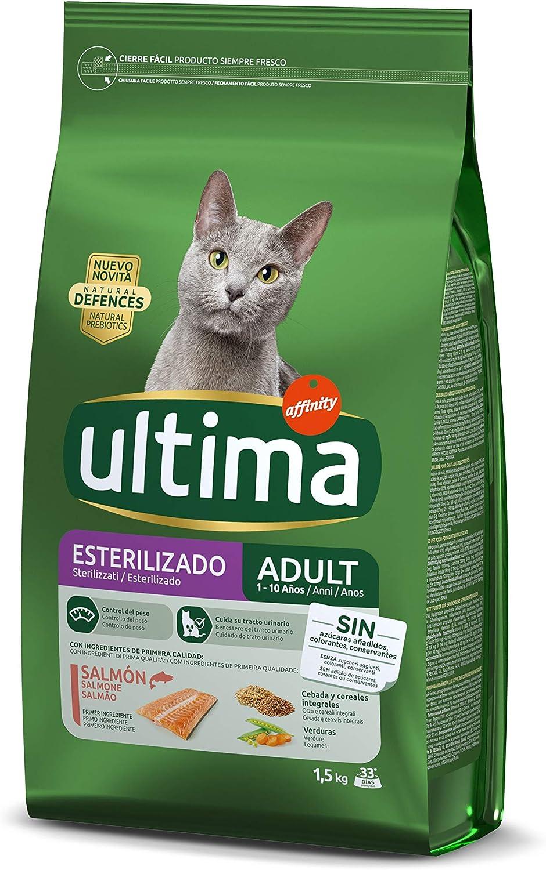 Ultima gatos esterilizados