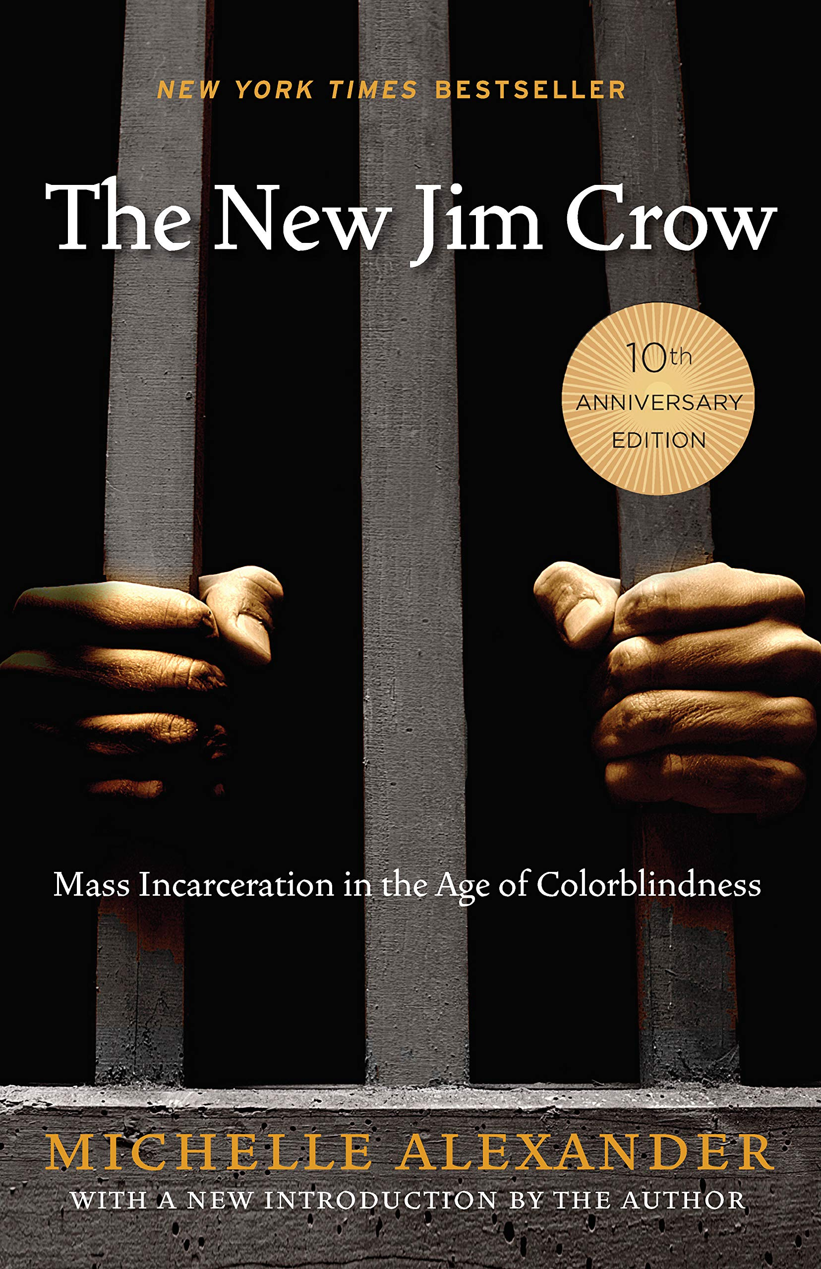Image result for new jim crow