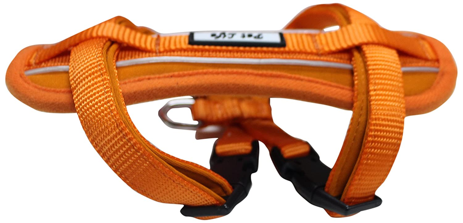 orange SMALL orange SMALL PET LIFE 'Mountaineer' Chest Compressive Adjustable and Reflective Easy Pull Pet Dog Harness, Small, orange