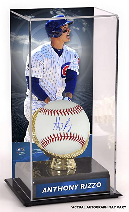 8d15b942 Anthony Rizzo Chicago Cubs Autographed Baseball and Gold Glove Display Case  with Image - Fanatics Authentic