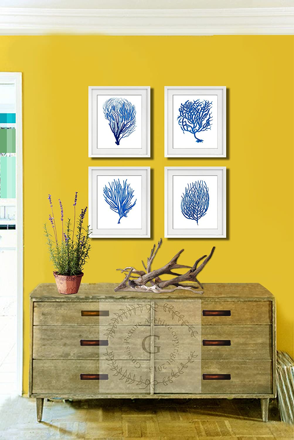Cool Sea Fan Wall Art Contemporary - The Wall Art Decorations ...