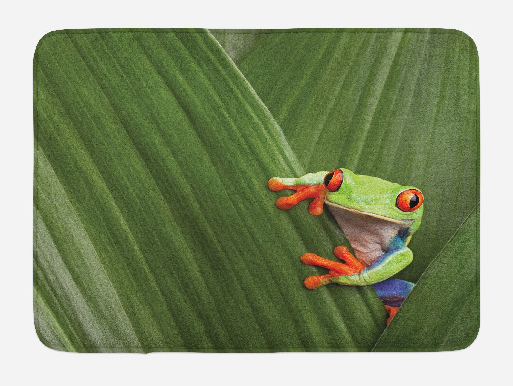 Lunarable Animal Bath Mat, Red Eyed Tree Frog Hiding in Exotic Macro Leaf in Costa Rica Rainforest Tropical Nature, Plush Bathroom Decor Mat with Non Slip Backing, 29.5 W X 17.5 W Inches, Green