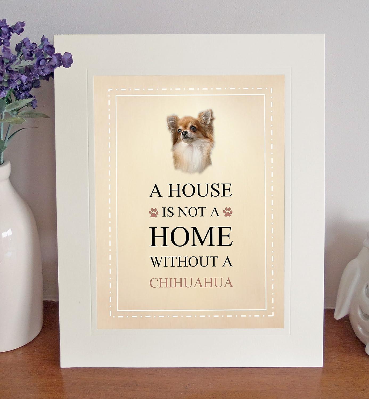 Chihuahua 25,4/x 20,3/cm sur pied une maison nest pas une maison Tableau Mont Joli Cadeau amusant