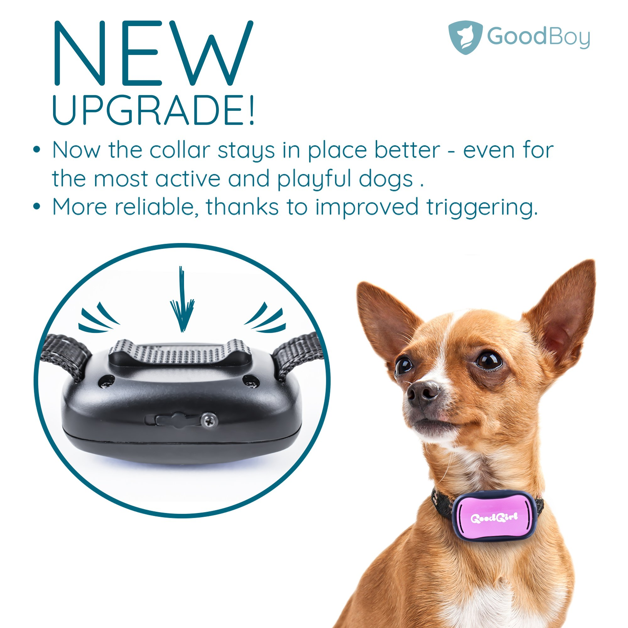 GoodBoy Small Rechargeable Dog Bark Collar for Tiny to Medium Dogs Waterproof and Vibrating Anti Bark Training Device That is Smallest & Most Safe On Amazon - No Shock No Spiky Prongs! (6+ lbs) by GoodBoy (Image #4)