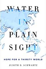 Water in Plain Sight: Hope for a Thirsty World Kindle Edition
