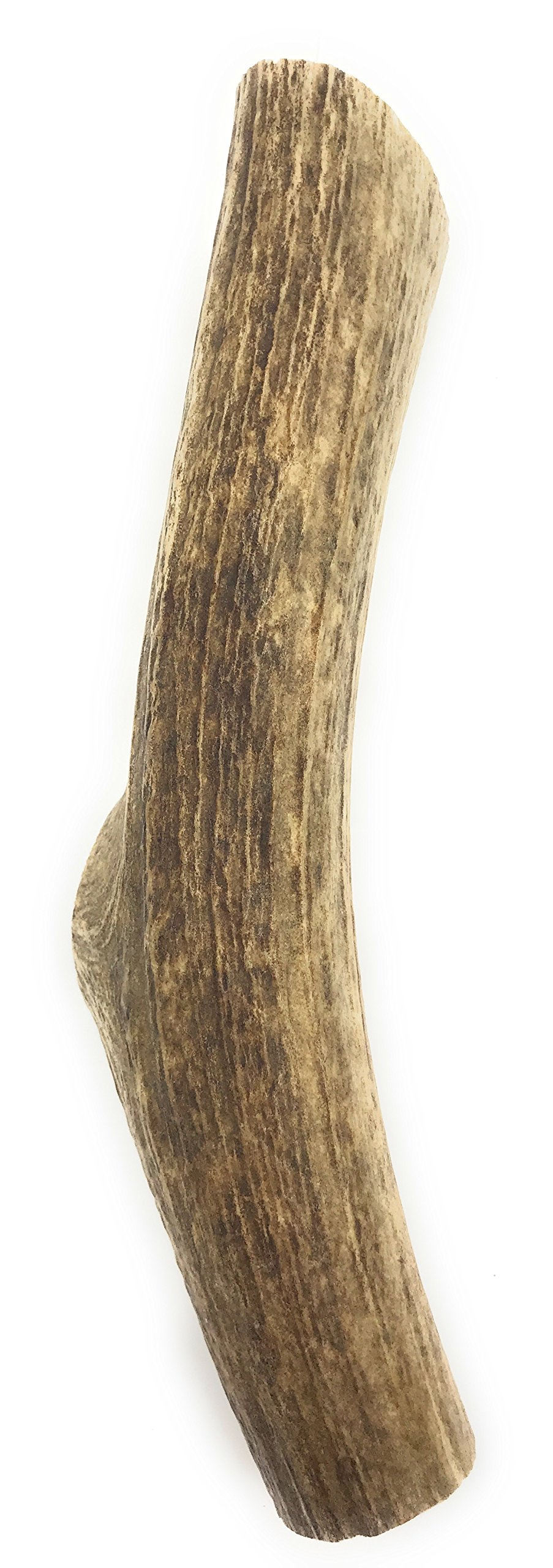 Heartland Antlers Elk Antlers for Dogs (Large 7-9) Grade-A, Premium Antler Chews for Dogs. USA Product, Long Lasting Bully Stick (XL 9''-11'')