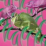 【メーカー特典あり】 消えない -EP (オリジナルステッカー(Type.A)付)