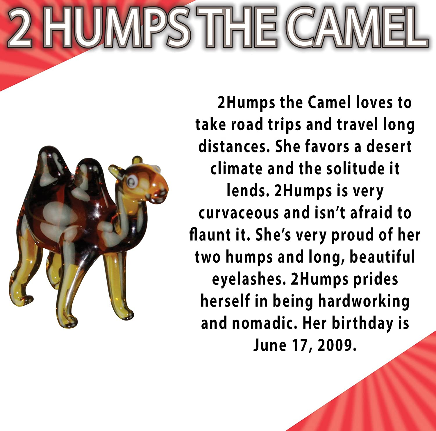 2Humps the Camel Looking Glass Miniature Glass Collectible 48 Piece Wedding Pack