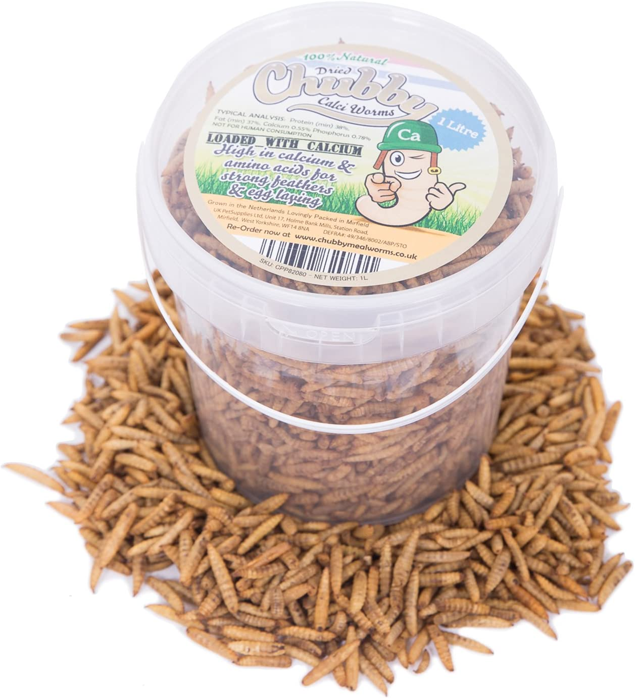 Chubby Mealworms - Gusanos Secos