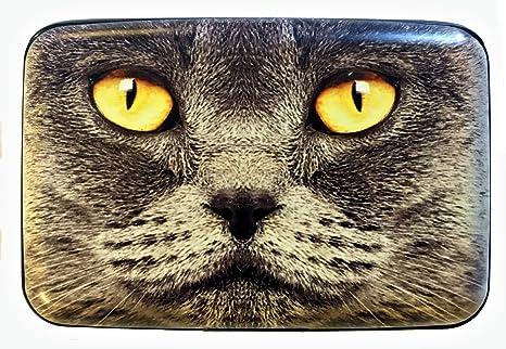 Amazon.com: Grupo higo diseño gris cara de gato Robo de ...