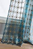 Aside Bside Sheer Curtains Floral Embroidered