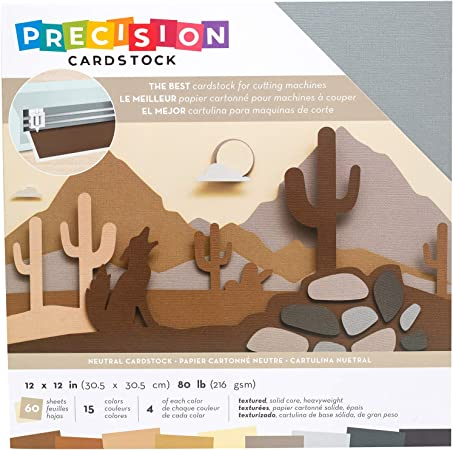 American Crafts AC354128 Precision Cardstock Pack 80lb 12X12 60//Pkg-Neutral//Textured
