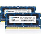 ROYEMAI 8GB Kit (2x4GB) PC3-8500 DDR3 1067MHz/1066MHz RAM Upgrade for Late 2008, Early/Mid/Late 2009, Mid 2010 MacBook, MacBo