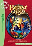 Beast Quest 21 - Aventures Sur Mesure, Le chaudron magique