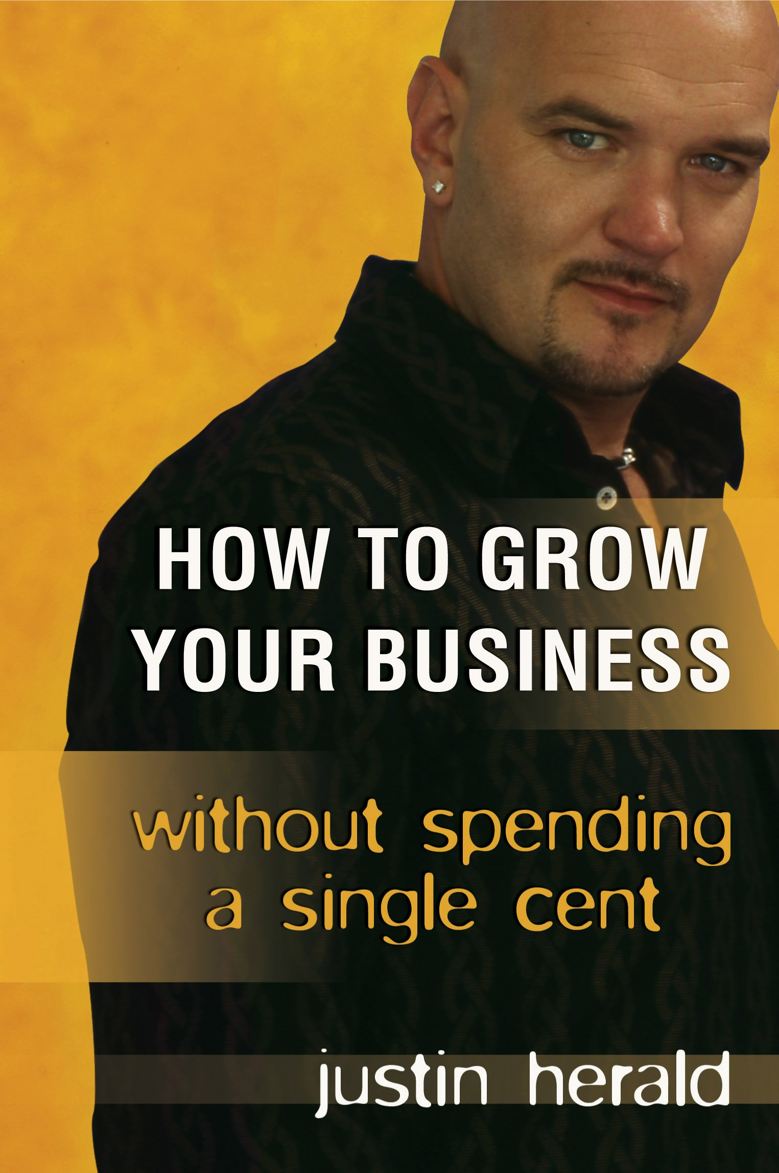 Read Online How to Grow Your Business Without Spending a Single Cent pdf epub