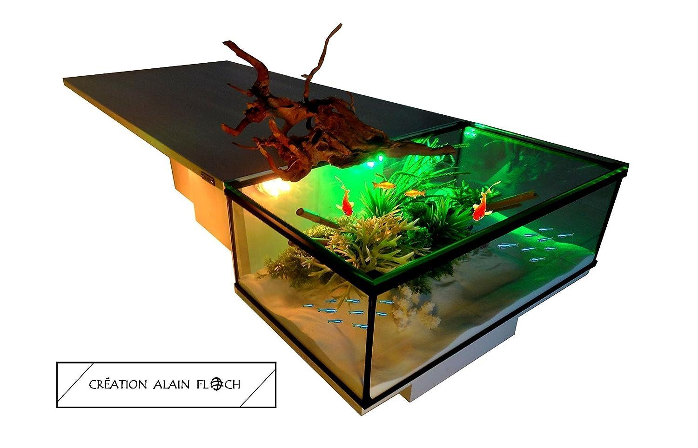 Fil Couvercle Aquarium 16 Along Verre Couleurs Terrarium Design Unique Telecommande Led Alain Basse Floch Avec 40 Sans En Table 4A3R5jLqc