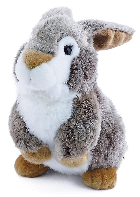1387c49a7d1e Amazon.com  Robin the Big Cheek Rabbit
