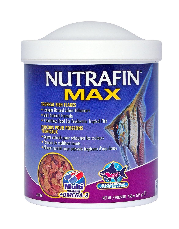 Freshwater aquarium fish vitamins - Amazon Com Nutrafin Max Tropical Fish Flakes 7 58 Ounce Pet Food Pet Supplies