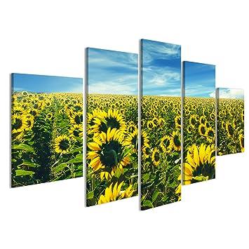 Islandburner Bild Bilder Auf Leinwand Sonnenblumen Wiesen Landschaft Im  Sommer. Landschaft Landwirtschaft Konzept