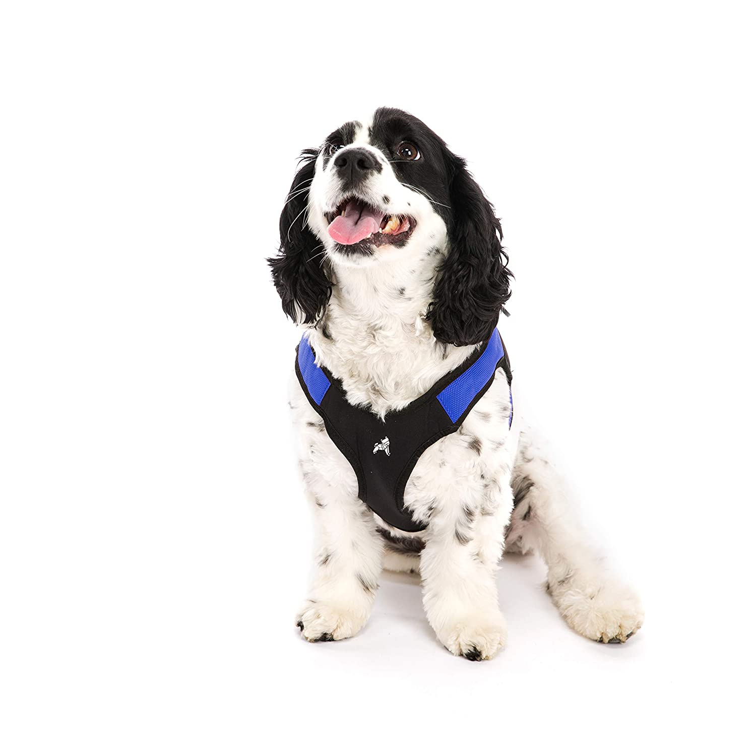 Gooby Escape Free Easy Fit Harness, Small Dog Step-in Harness for Dogs That Like to Escape Their Harness, bluee, Large